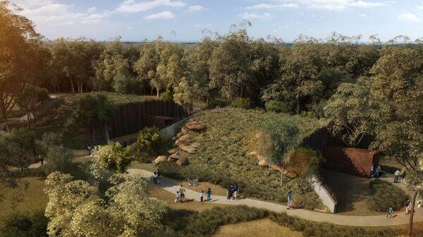Зоопарк Сиднея. Иллюстрация