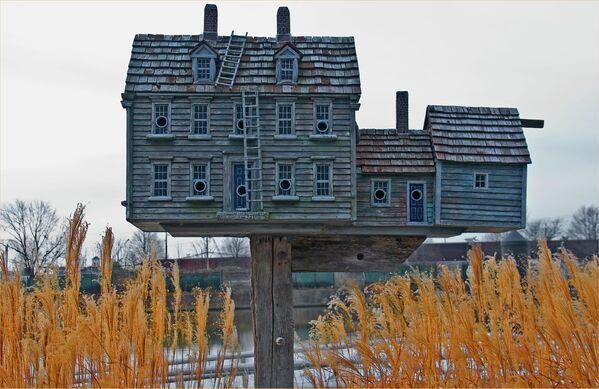 Скворечник-дом