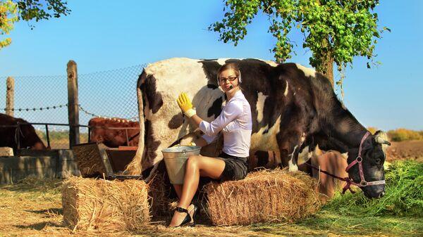 Бизнес-леди доит корову