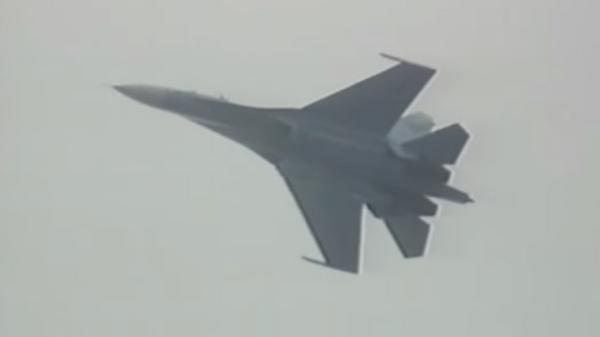 Такого не ожидали: летчик Пугачев рассказал о первой кобре на Су-27