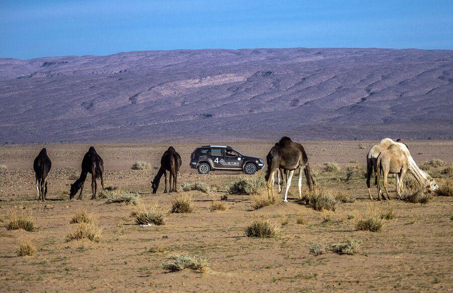 Марокко, горы Атласа