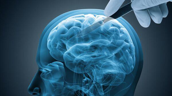 Ученые предложили лечить болезнь Альцгеймера очисткой нейронов от мусора