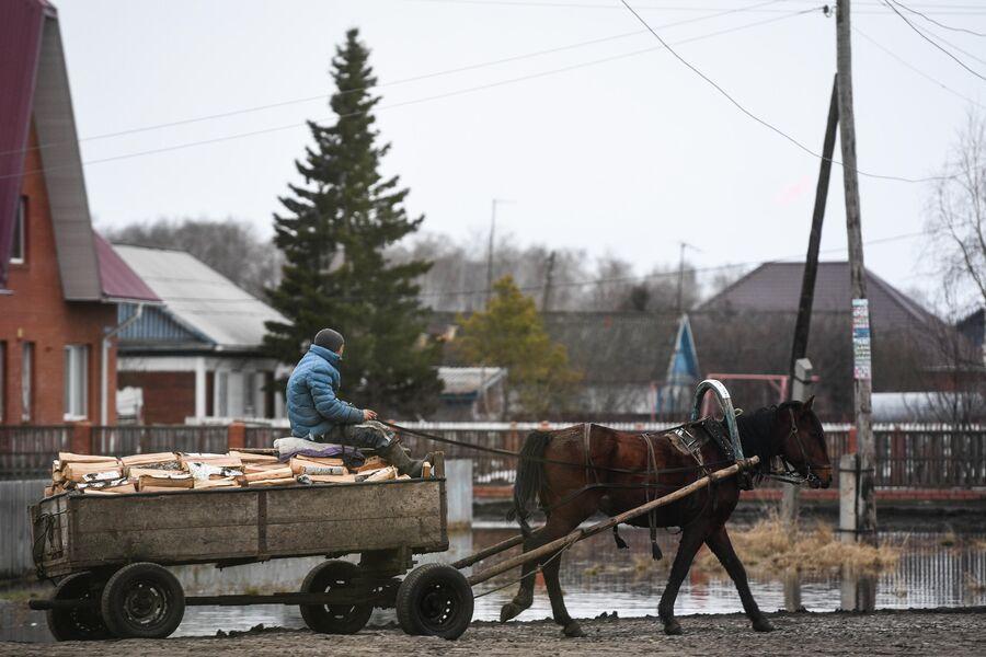 В деревне Аполлоновка, Омской области