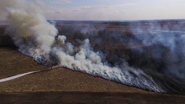 Сухая трава горит в поле в Ленинск-Кузнецком районе Кемеровской области