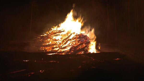 Пожар в национальном парке Лосиный остров