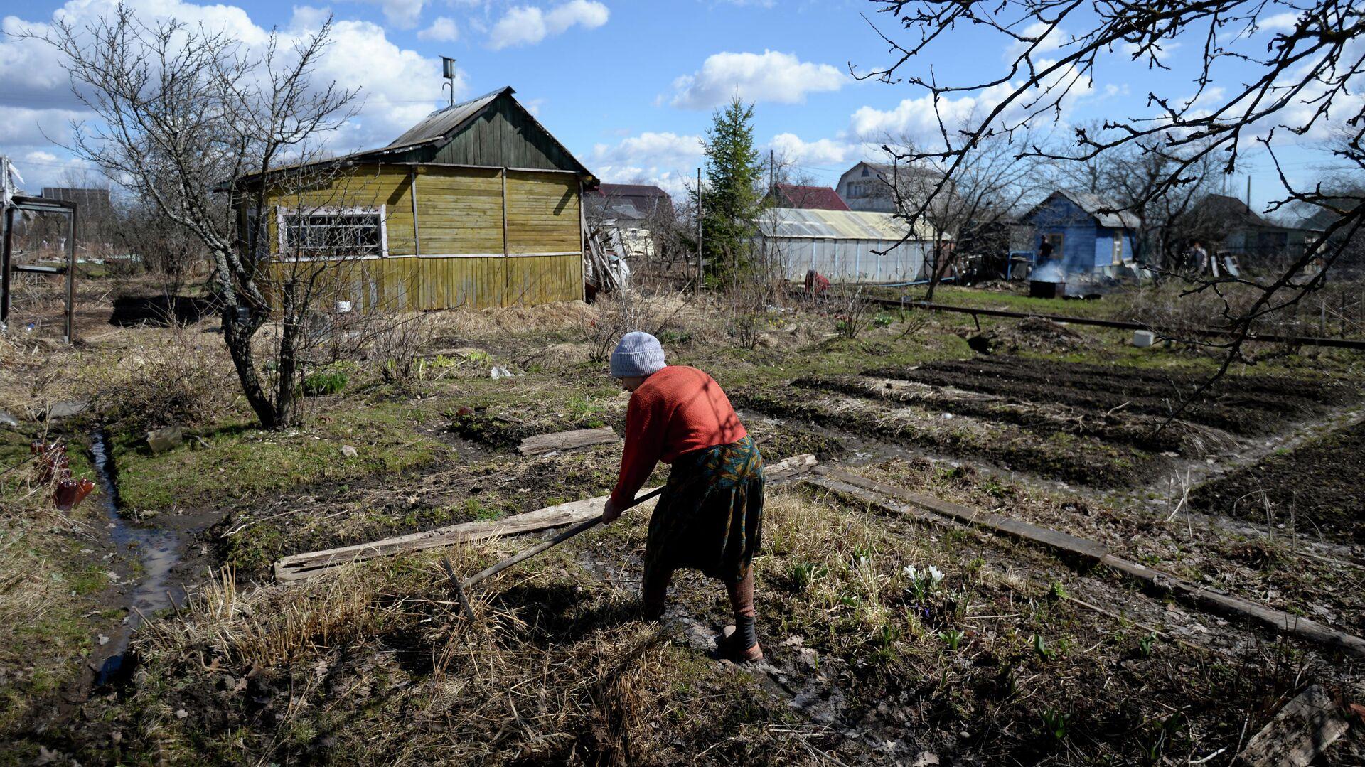 Дачница работает на приусадебном участке - РИА Новости, 1920, 03.11.2020