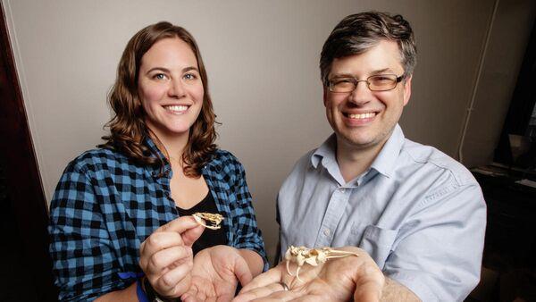 Стефания Крофтс и ее коллега Филип Андерсон держат в руках  черепа гадюковых змей