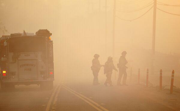 Огонь поглотил уже 220 гектаров. С пожаром борются 4 тысячи пожарных штата Виктория, к ним присоединились волонтеры из других австралийских штатов.