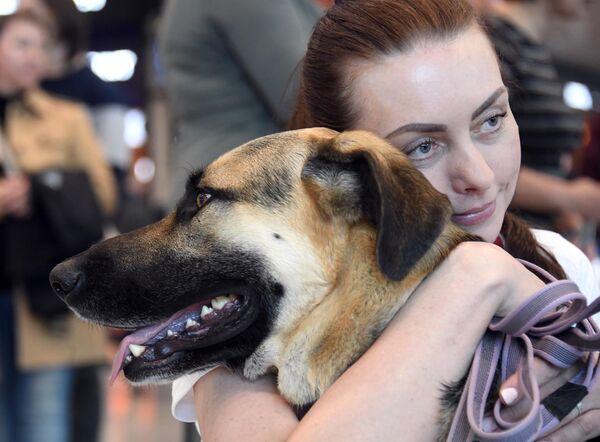 Женщина обнимает собаку в аэропорту Домодедово