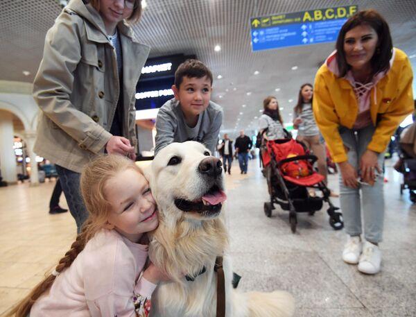 Девочка обнимается с собакой в аэропорту Домодедово