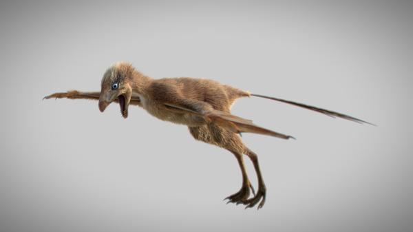 Так художник представил себе динозавра-бэтмена, чьи останки были найдены в Китае