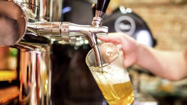 Бармен наливает пиво в кружку
