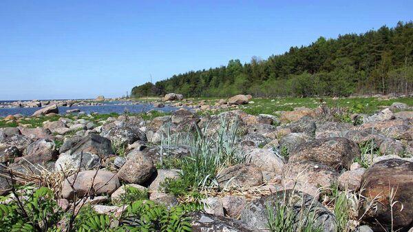 В заповедник Восток Финского залива отправляется первая комплексная научная экспедиция