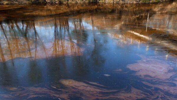 Река в Московской области