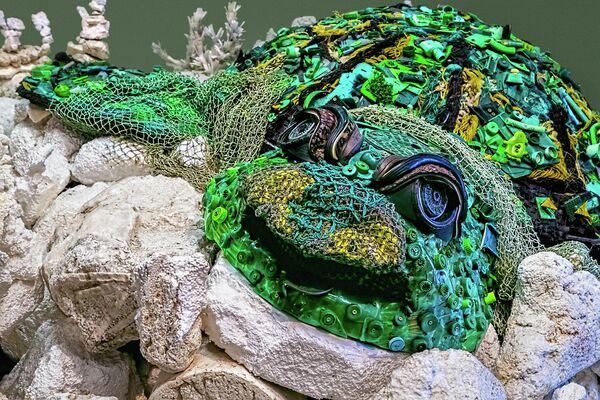 Черепаха из мусора Анджелы Поззи
