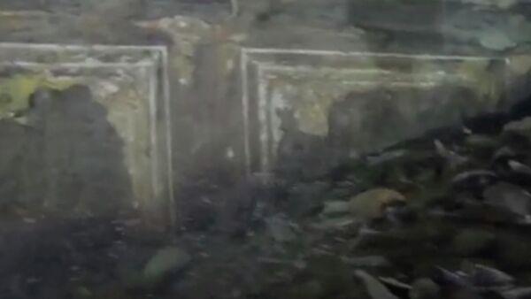 Скриншот видео с экспедиции Нептун Романа Дунаева в Крыму