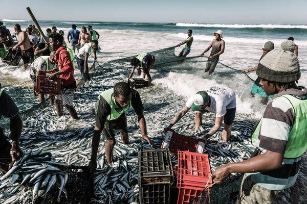 Рыбаки пытаются поймать сардину на пляже Аманцимтоти