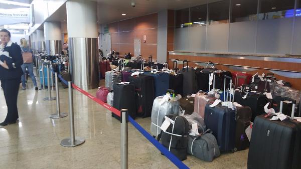 Багаж пассажиров в аэропорту Шереметьево