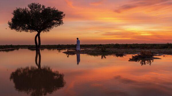 Вечерний пейзаж в Саудовской Аравии