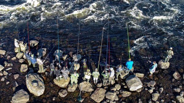 Рыбаки ловят рыбу
