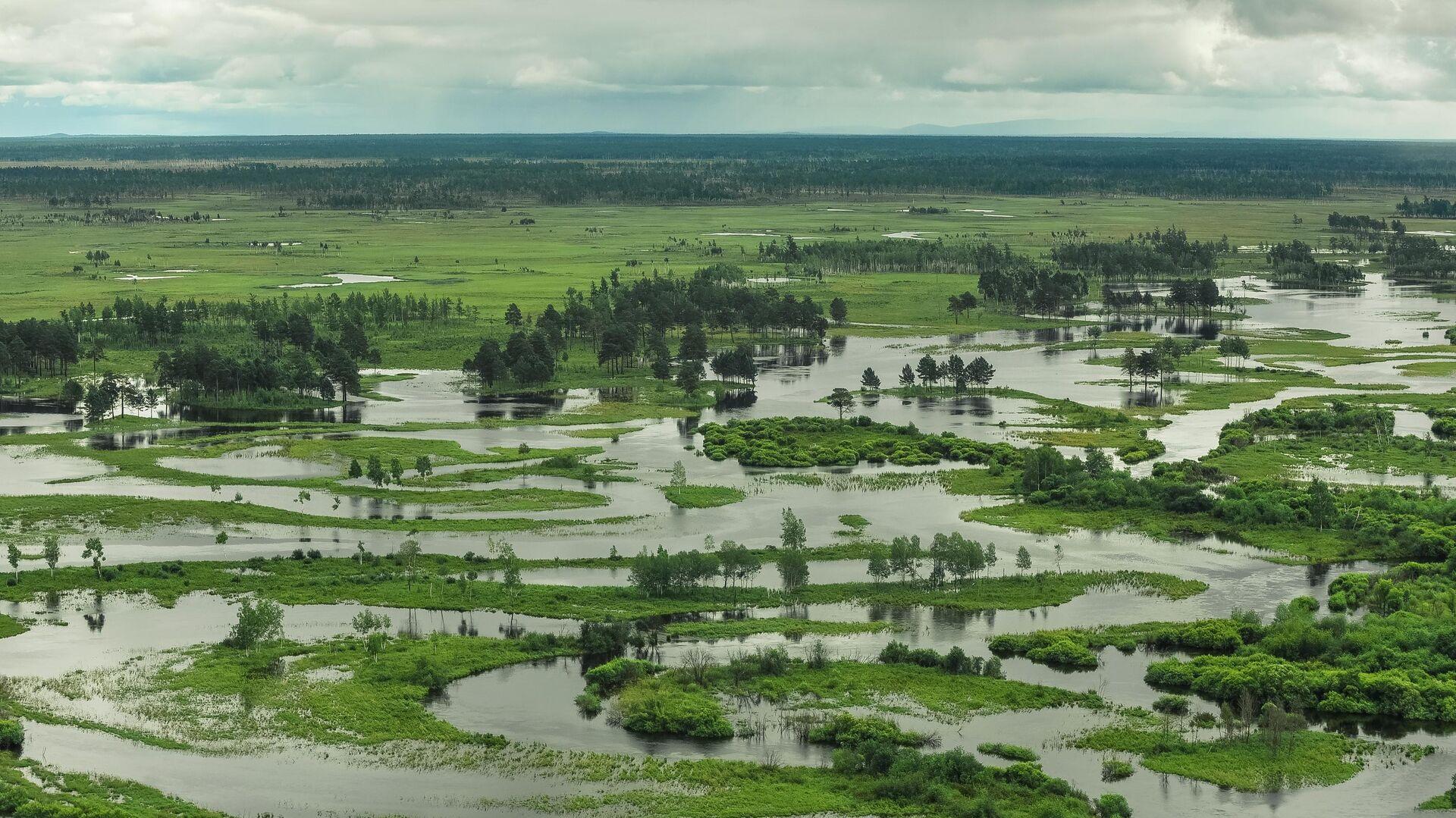 Территория, затопленная в результате разлива реки Селемджа, в Селемджинском районе Амурской области - РИА Новости, 1920, 21.06.2021