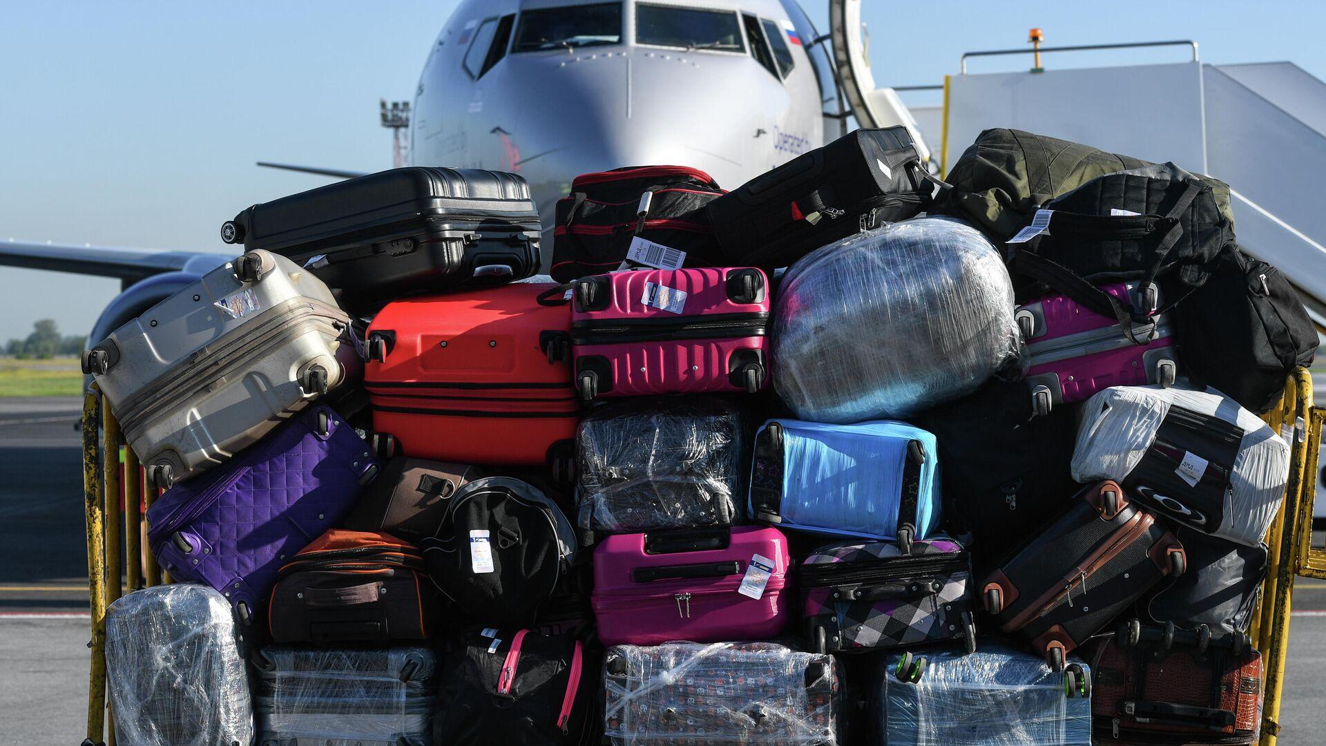 Багаж пассажиров самолета Boeing 737-800 авиакомпании Smartavia в аэропорту Толмачево - РИА Новости, 1920, 26.01.2021