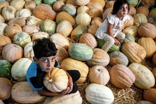 Палестинский мальчик сидит с тыквами в секторе Газа