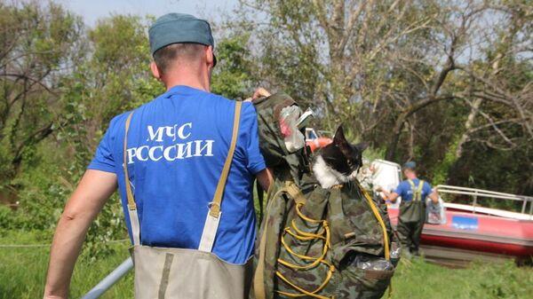 Эвакуация кошек и их хозяина спасателями МЧС России в Хабаровске