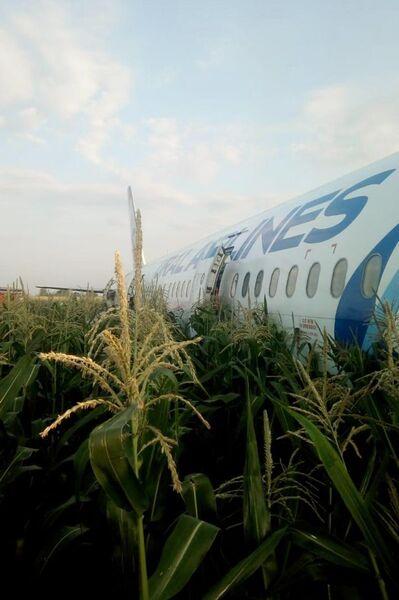 Самолет А-321 с пассажирами на борту совершил жесткую посадку в Подмосковье