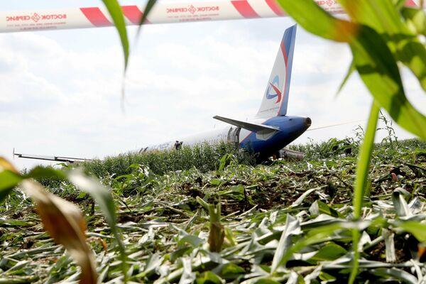 Последствия вынужденной посадки в Подмосковье лайнера Airbus А-321 авиакомпании Уральские авиалинии в результате попадания птиц в двигатели самолета