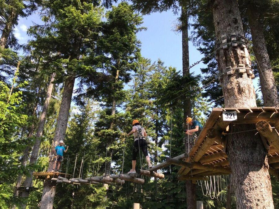 Шварцвальдские леса. Веревочный парк в Баден-Баде