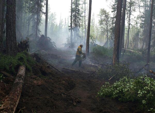 Сотрудник лесохраны во время ликвидации лесного пожара в Богучанском районе Красноярского края