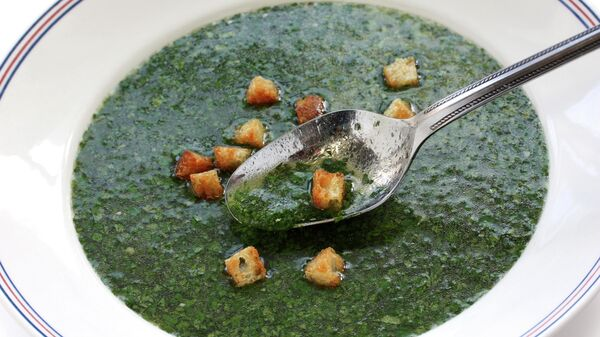 Египетский суп из шпината Molokhia