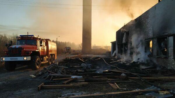 Сотрудники МЧС во время ликвидации пожара на бывшей птицефабрике в Хабаровске