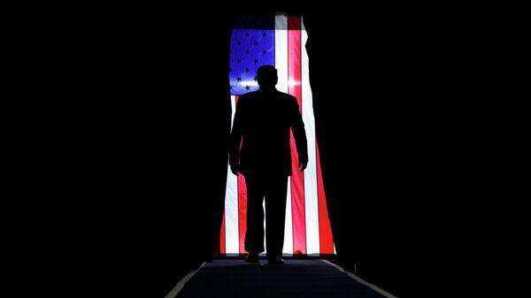 Президент США Дональд Трамп на предвыборном митинге