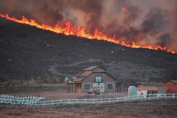 Пожар в Валье-де-Гуадалупе, Мексика