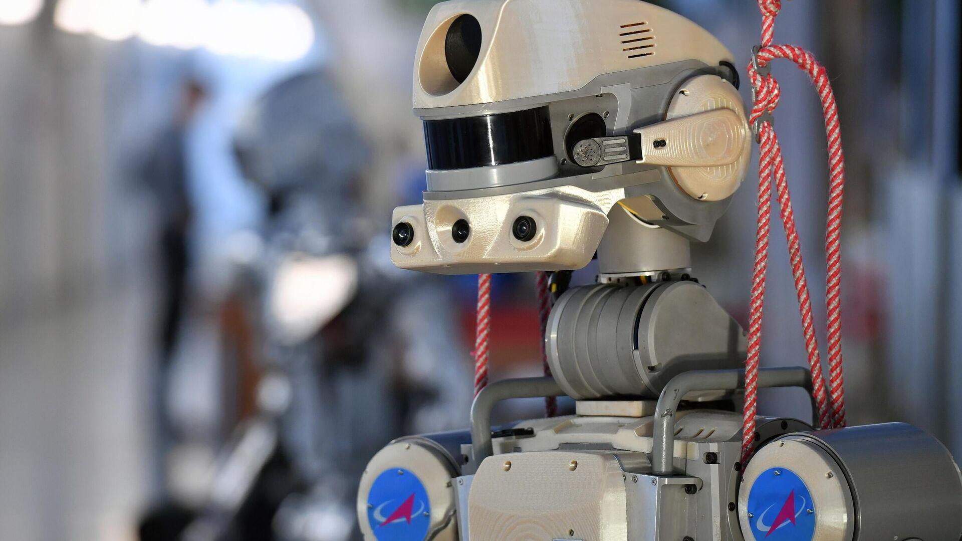 Антропоморфный робот SKYBOT F-850 Фёдор, представленный на XIII Международной научно-практической конференции Пилотируемые полёты в космос - РИА Новости, 1920, 27.07.2020