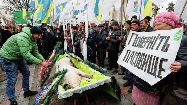 Митинг против земельной реформы перед зданием парламента в Киеве