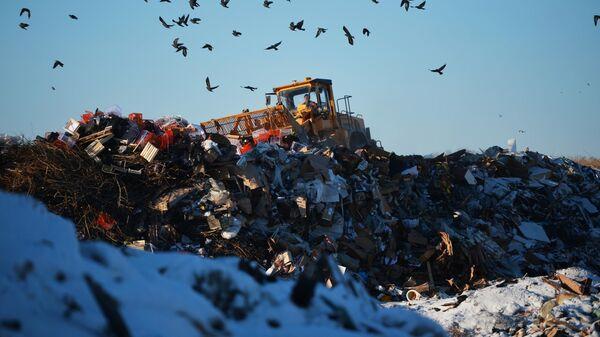 Бульдозер на полигоне твердых бытовых отходов возле Каменска-Уральского Свердловской области.