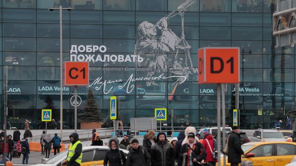 Пассажиры у терминала аэропорта Домодедово имени М. В. Ломоносова