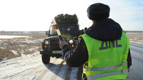 Сотрудник ДПС останавливает машину для проверки документов, во время рейда по незаконной вырубке хвойных деревьев