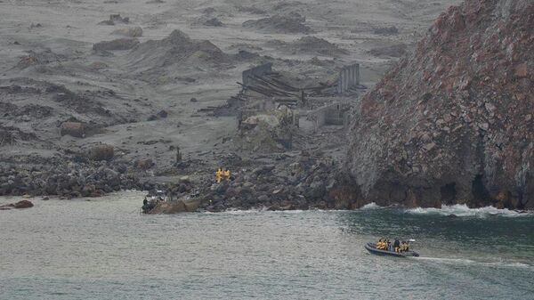 Спасательные отряды полиции Новой Зеландии обследует остров Вакаари (Белый Остров), где произошло извержение вулкана