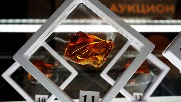 Аукцион Янтарь-инклюз в Калининграде