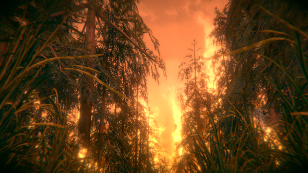 Внутри лесного пожара. Катастрофа в дополненной реальности