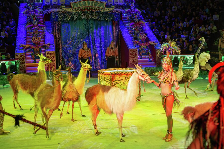 Московский Цирк Никулина на Цветном бульваре, сказка-шоу Тайна новогодней звезды