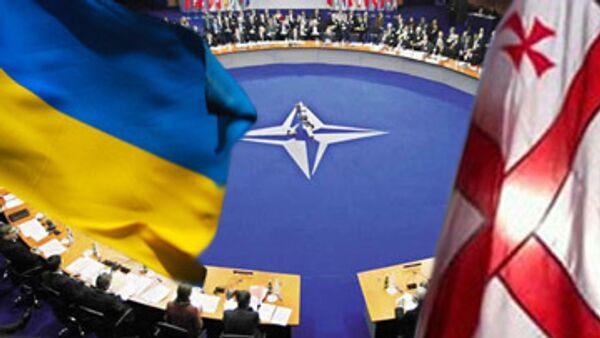 Членство Грузии и Украины в НАТО не будет способствовать безопасности Европы - Шредер