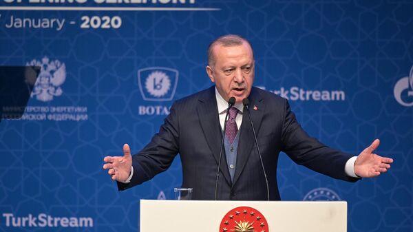 Президент Турции Реджеп Тайип Эрдоган выступает на церемонии официального открытия газопровода Турецкий поток в Стамбуле