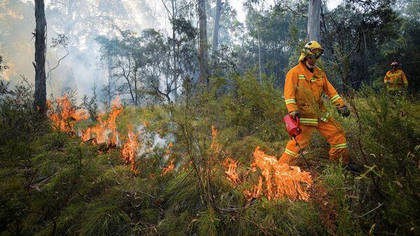 Контролируемый пожар вблизи Коррионга, Австралия