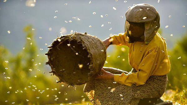 Кадр из фильма Страна меда