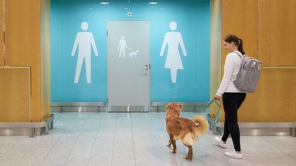 Туалет для собак в аэропорту Хельсинки
